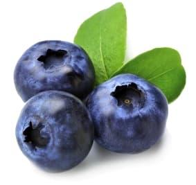 Blueberries Brain Super Foods