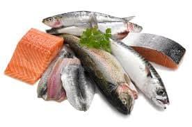 Oily Fish Brain Super Foods