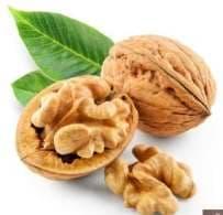 Walnuts Super Brain Foods